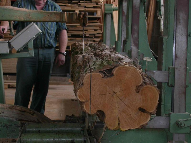 caract ristiques intrins ques du bois de robinier robinia. Black Bedroom Furniture Sets. Home Design Ideas