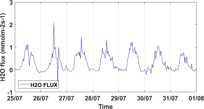 Time series of H2O flux