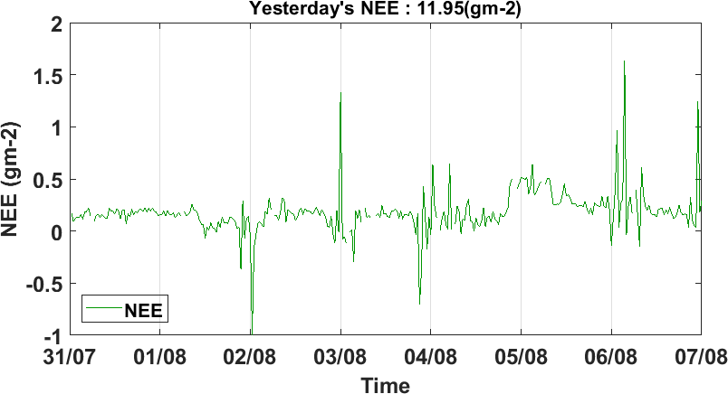 Time series of NEE