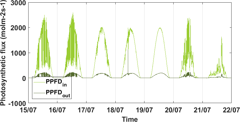 Time series of incoming and outgoing photosynthetic flux